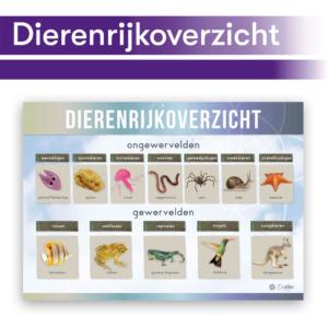 Thematisch leren met DaVinci's onderwijsmethode voor basisscholen | Dierenrijkoverzicht
