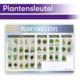 Thematisch leren met DaVinci's onderwijsmethode voor basisscholen | Plantensleutel